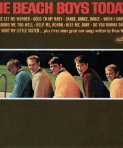 The Beach Boys - Today! (Mono) (Vinyl)