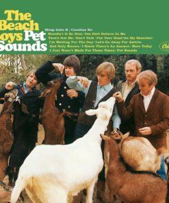 The Beach Boys - Pet Sounds (Mono) (Vinyl)