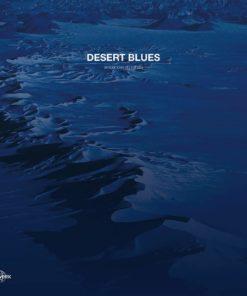 Diverse - Desert Blues: Ambiances Du Sahara (Vinyl)