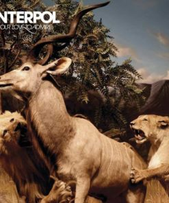 Interpol - Our Love To Admire (Vinyl)